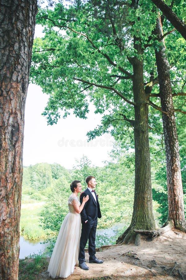 Bruidegom en bruid samen Huwelijks romantisch paar openlucht royalty-vrije stock foto