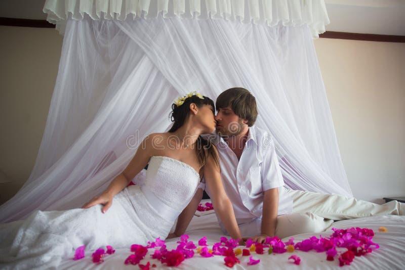 Bruidegom het kussen bruidzitting op wit bed in roze bloemblaadjes royalty-vrije stock afbeelding