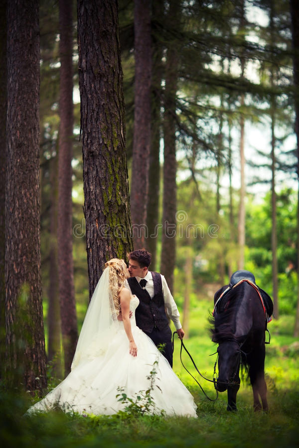 Bruidegom met de bruid en een bruin paard stock fotografie