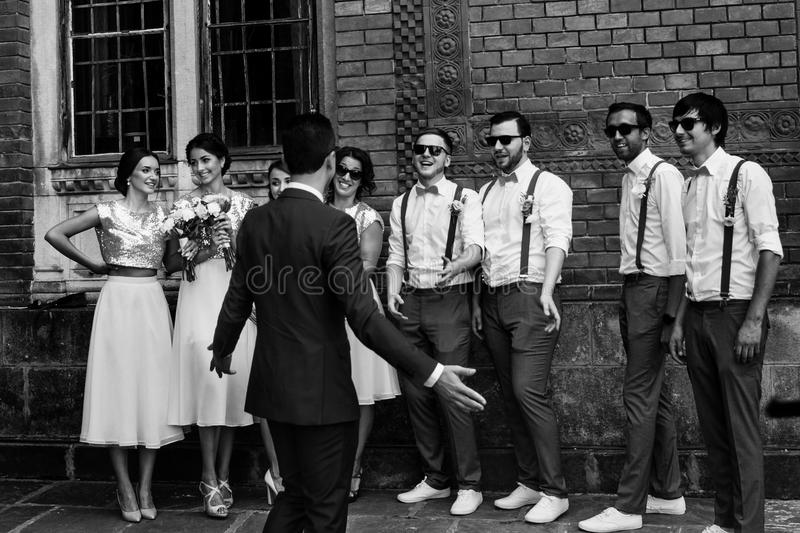 Bruidegom met groomsmen en de bruidsmeisjes royalty-vrije stock foto