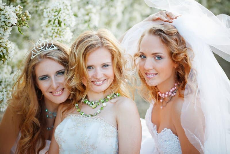 Bruiden stock fotografie