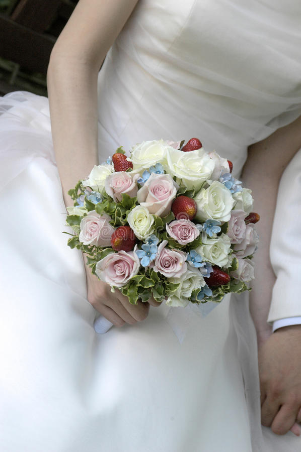 Bruids beeld royalty-vrije stock foto's