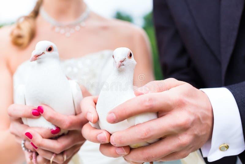 Bruids paar bij huwelijk met duiven royalty-vrije stock afbeeldingen