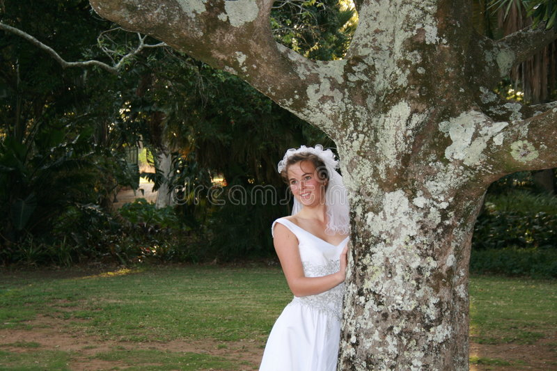 bruids schoonheid   stock afbeeldingen