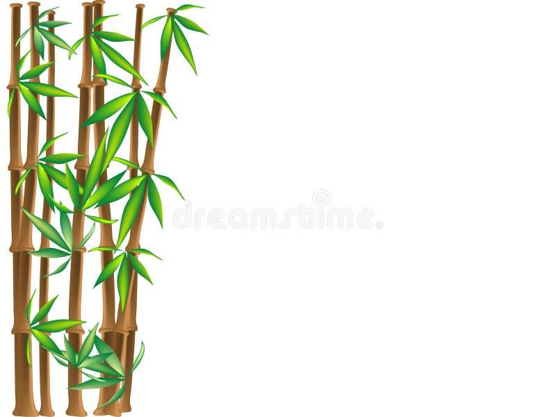 Bruin bamboe royalty-vrije illustratie