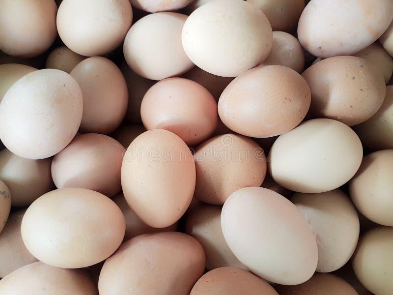 Bruin Ei in Traditionele Markten stock afbeelding