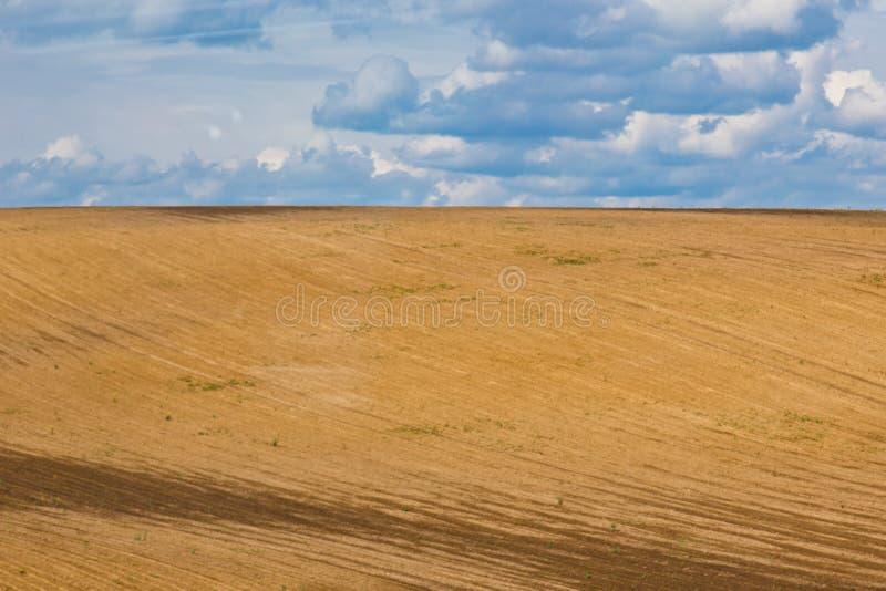 Bruin geploegd niet-gezaaid gebied op een achtergrond van blauwe de zomerhemel zonnige hemel over een lege weide sereniteit, zali stock afbeelding