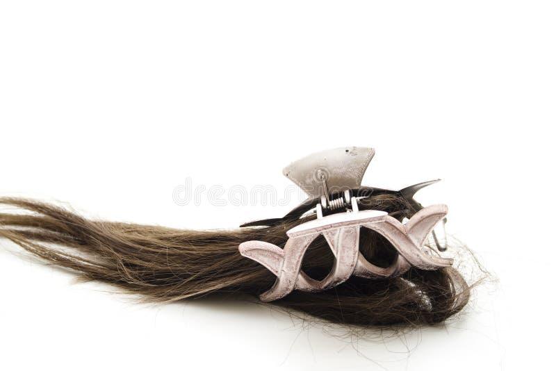 Bruin haar met haarklem stock foto