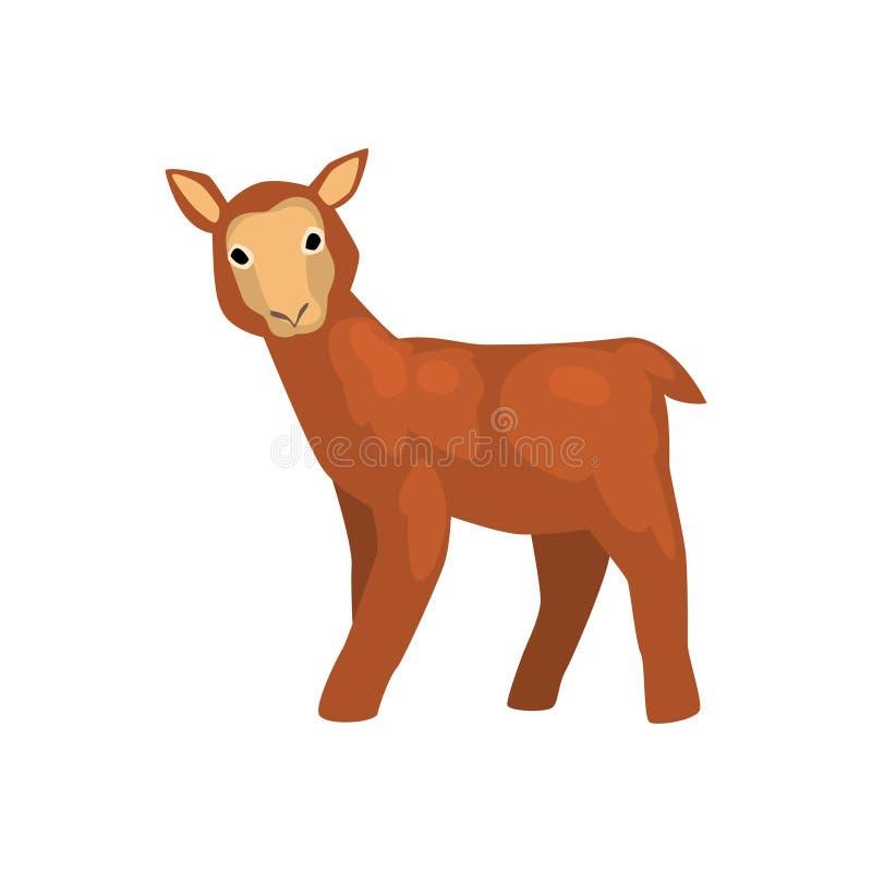 Bruin lam, leuke landbouwbedrijf dierlijke vectorillustratie op een witte achtergrond stock illustratie