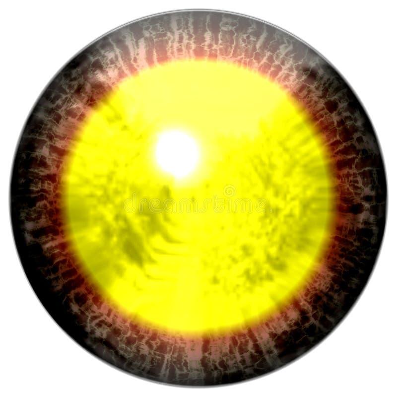 Bruin rood oog met open leerling en heldere gele retina op achtergrond Donkere kleurrijke iris rond leerling, geïsoleerd oog stock illustratie