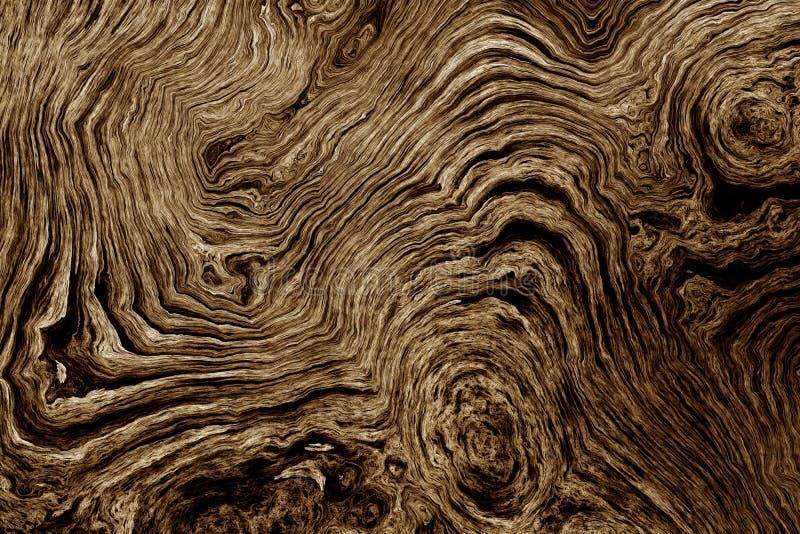 Bruine achtergrond met het patroon van de boomwortel royalty-vrije illustratie