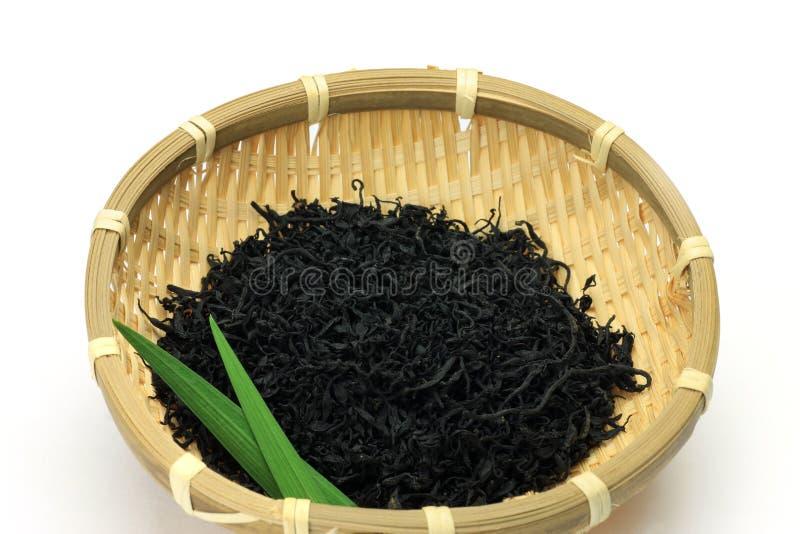 Bruine alge stock afbeeldingen