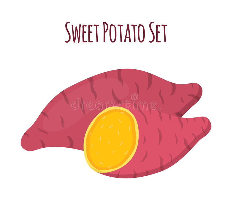 Bruine batat, bataat en plakken Organische gezonde groente stock illustratie