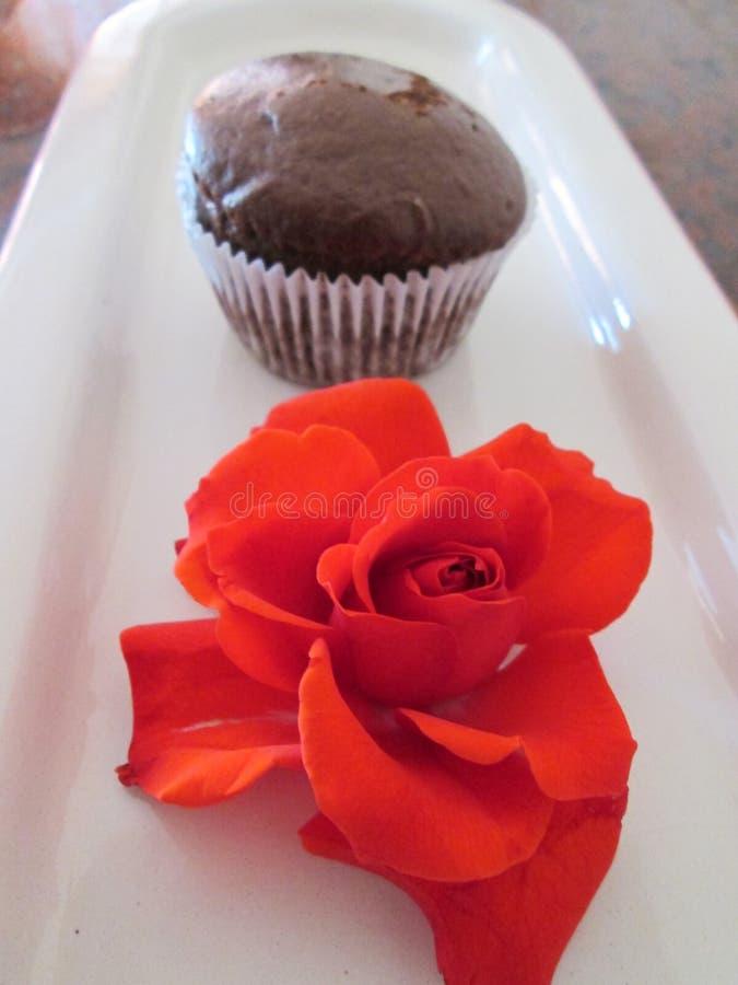 Bruine Cupcake stock foto's