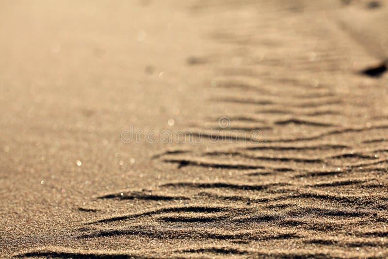 Bruine de textuurachtergrond van het woestijnzand royalty-vrije stock foto's