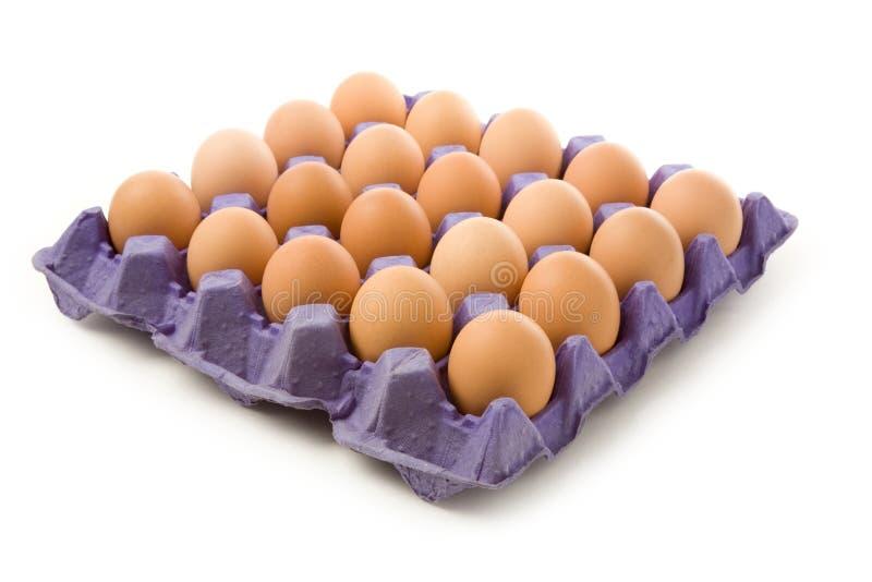 Bruine eieren stock afbeelding
