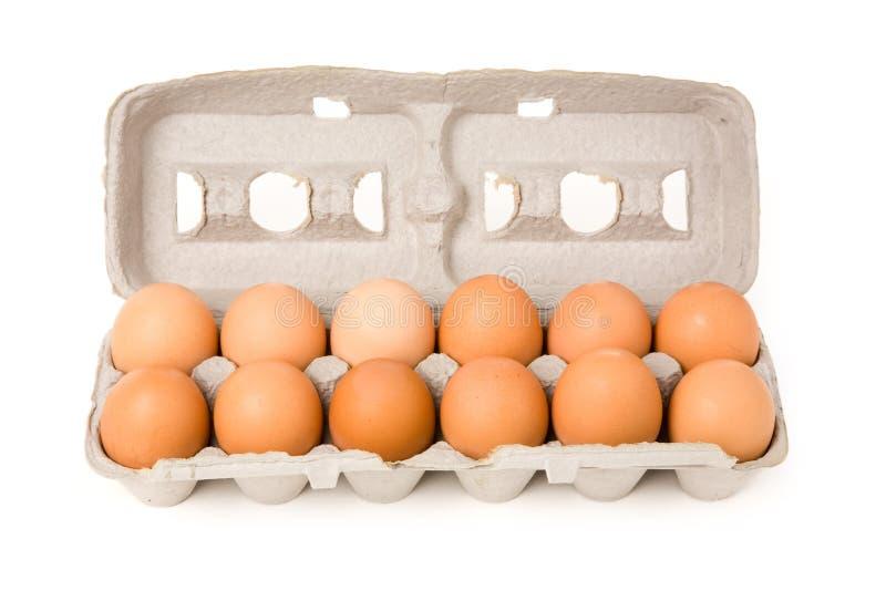 Bruine eieren royalty-vrije stock afbeeldingen