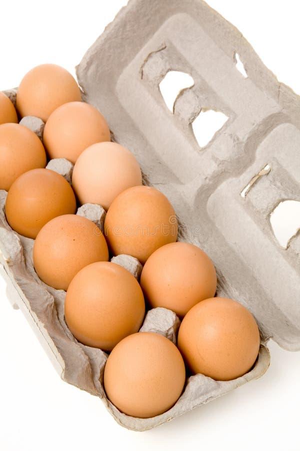 Bruine eieren royalty-vrije stock afbeelding