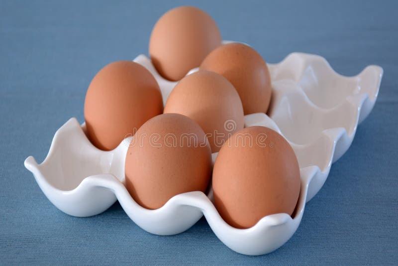 Bruine eieren in ceramisch dienblad royalty-vrije stock afbeelding