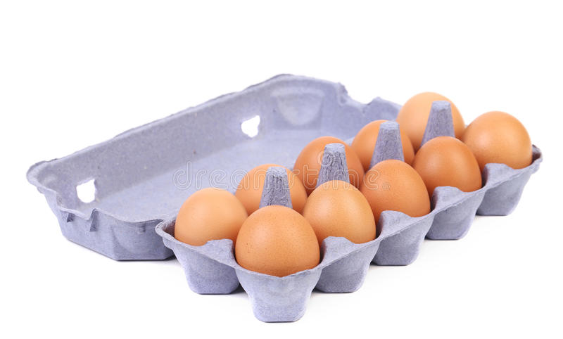 Bruine eieren in eidoos stock foto's