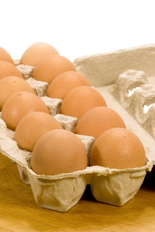Bruine Eieren in Karton royalty-vrije stock foto's