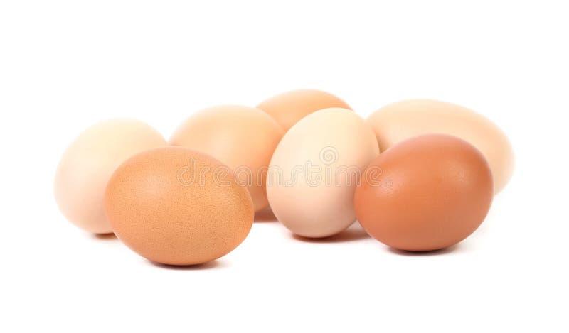 Bruine en witte eieren. stock fotografie