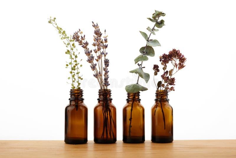 Bruine Flessen etherische olie met verse kruiden royalty-vrije stock afbeeldingen
