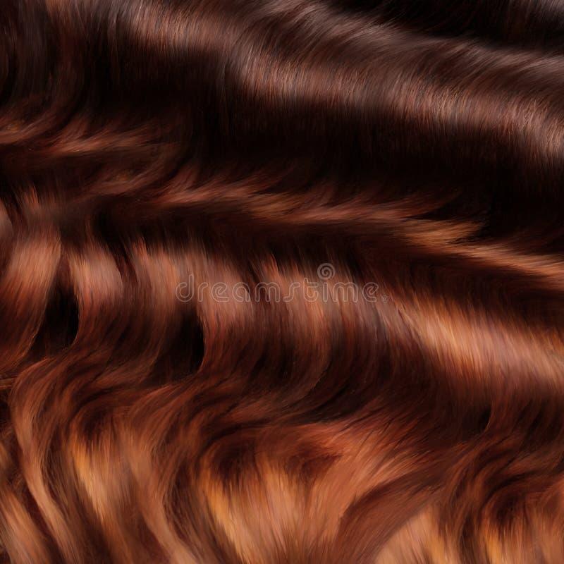 Bruine Haartextuur. Hoog - kwaliteitsbeeld. stock afbeeldingen