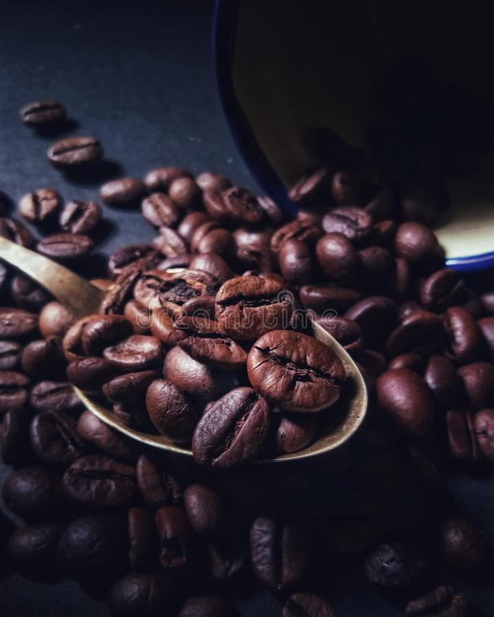 bruine koffiebonen klaar te rollen stock afbeelding