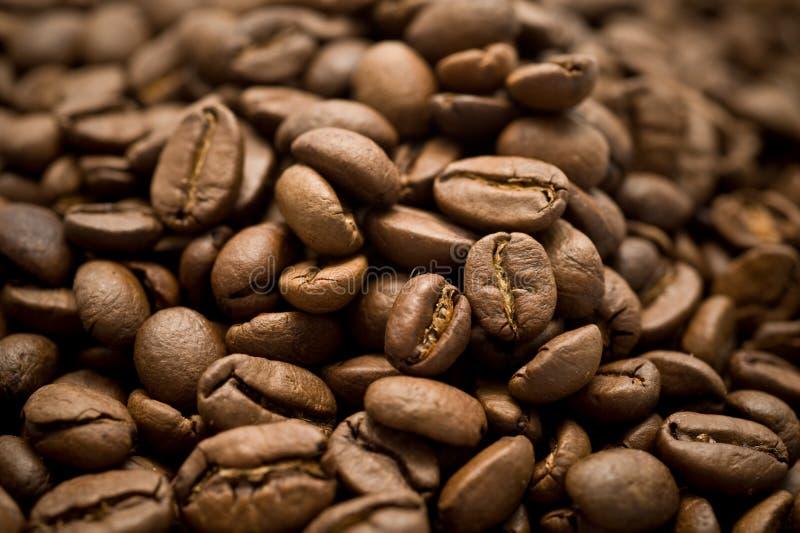 Bruine koffieclose-up stock foto