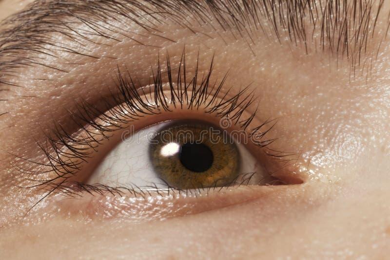 Bruine man oogclose-up stock afbeelding