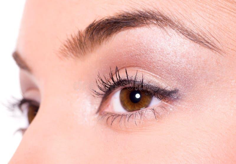 Bruine ogen royalty-vrije stock afbeelding