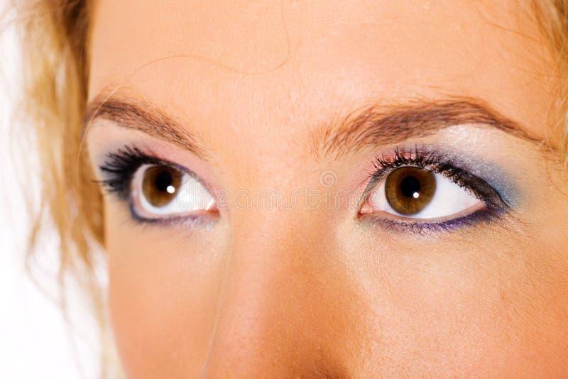 Bruine ogen stock afbeeldingen