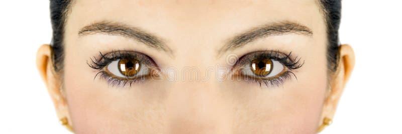 Bruine ogen stock foto's