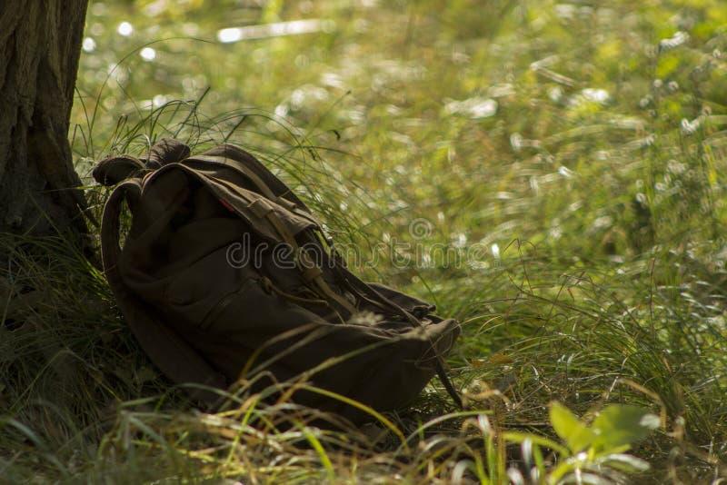 Bruine rugzak dichtbij de boom stock fotografie