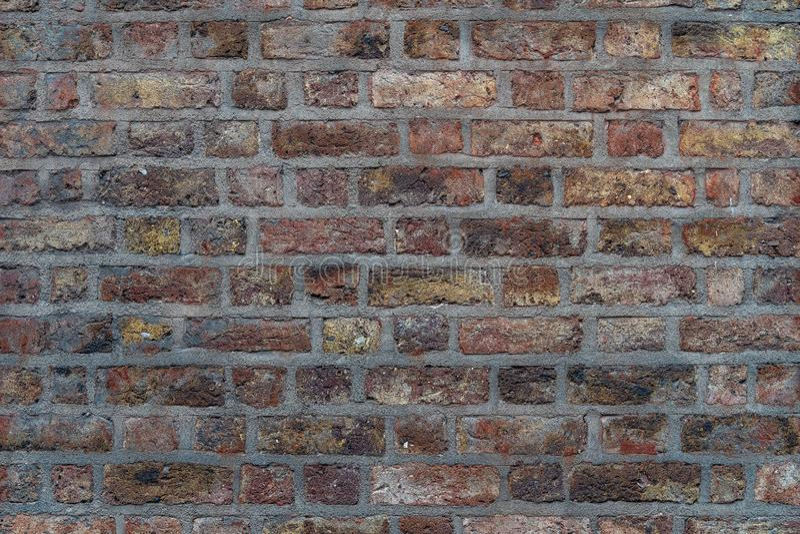 Bruine rustieke hoge bakstenen muur - - kwaliteitstextuur/achtergrond stock foto's