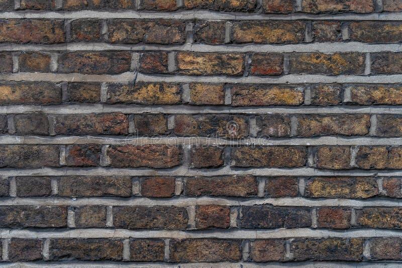 Bruine rustieke hoge bakstenen muur - - kwaliteitstextuur/achtergrond stock foto