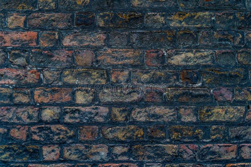 Bruine rustieke hoge bakstenen muur - - kwaliteitstextuur/achtergrond stock afbeelding