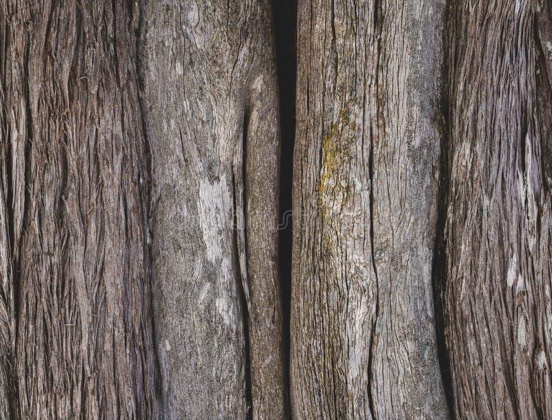 bruine schors van oude boom De schorsachtergrond van de close-upboom stock foto