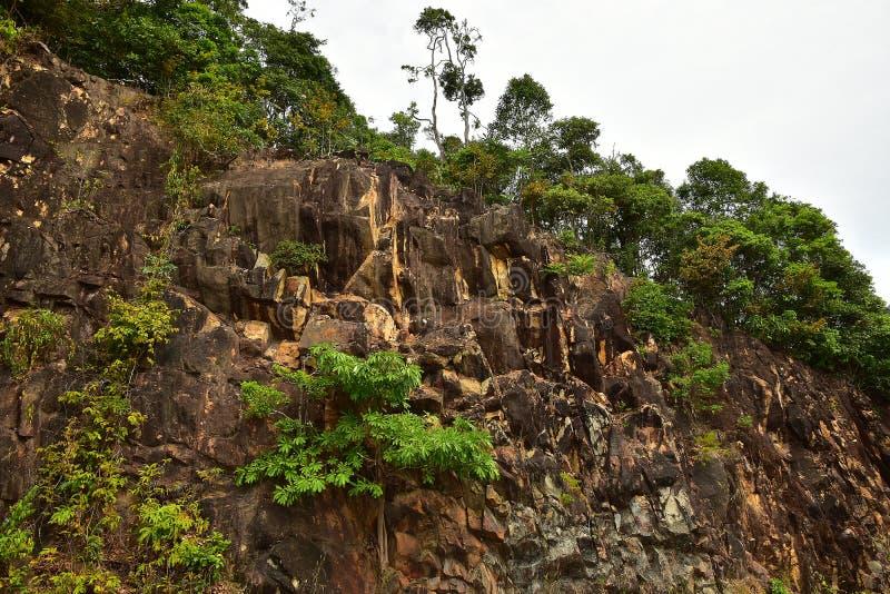 Bruine Steen Cliff View met kleine boom aan de kant van weg royalty-vrije stock afbeelding
