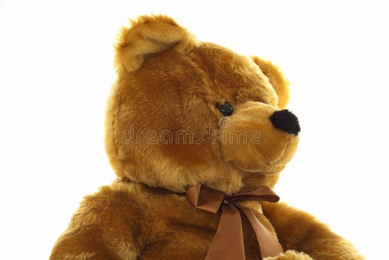 Bruine teddybeer stock afbeelding