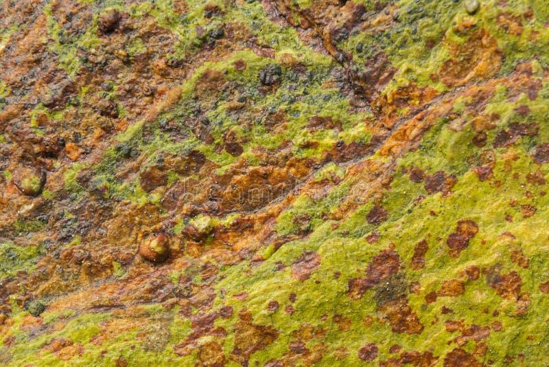 Bruine vlekken op de groene oppervlakte Beschermend patroon voor kleren stock afbeeldingen