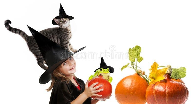 Bruja de Halloween con un gato fotografía de archivo