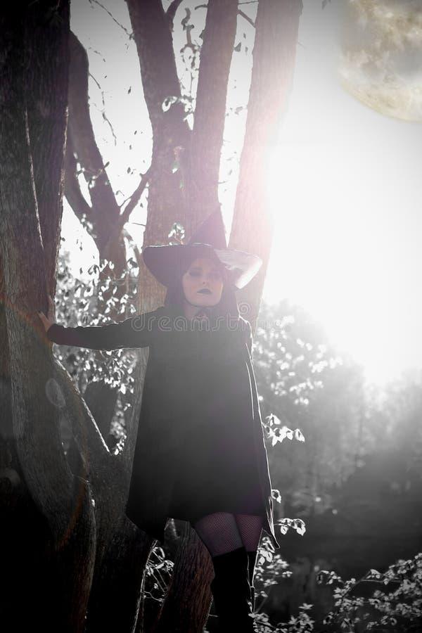 Bruja en bosque acentuado negro del sombrero imagenes de archivo