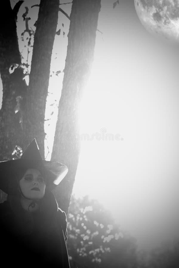 Bruja en bosque acentuado negro del sombrero fotografía de archivo libre de regalías