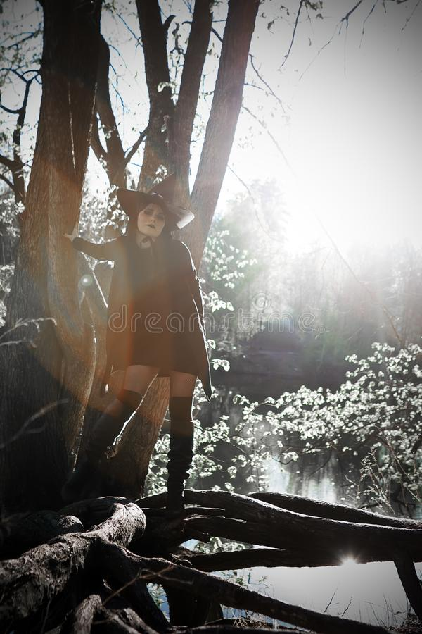Bruja en bosque acentuado negro del sombrero fotos de archivo