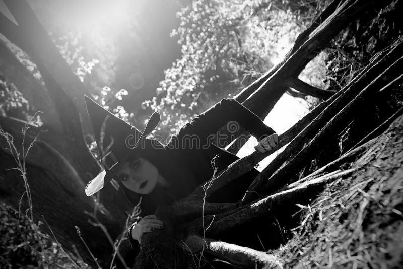 Bruja en bosque acentuado negro del sombrero imagen de archivo libre de regalías