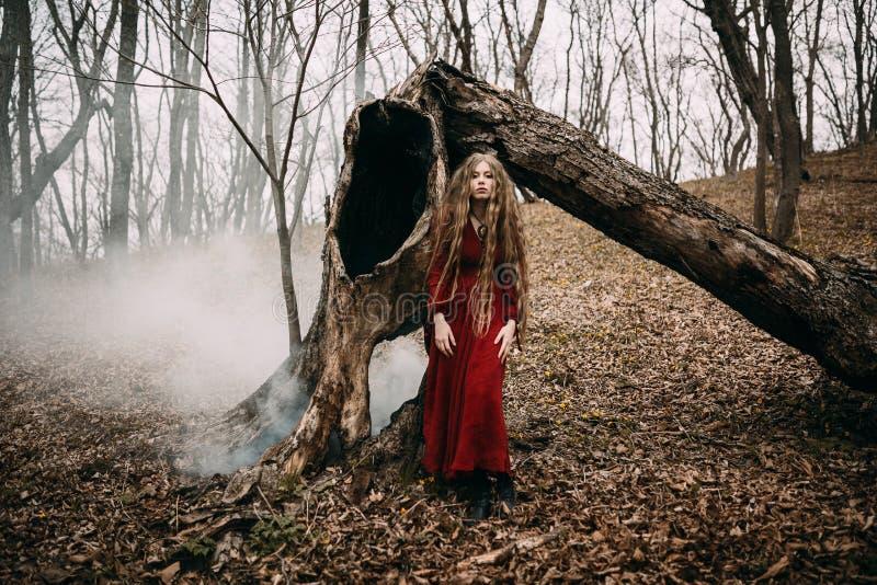 Bruja joven en el bosque del otoño fotos de archivo libres de regalías