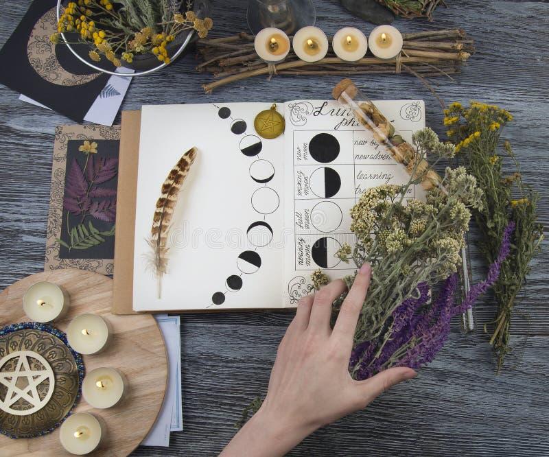 Bruja que prepara los ingredientes para el ritual de la luna imagenes de archivo