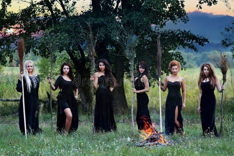 Brujas con las escobas imagenes de archivo